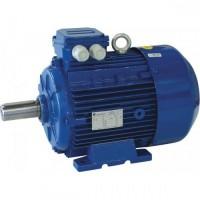 Ηλεκτροκινητήρας τριφασικός 1400 στροφών 4Hp type 100LB